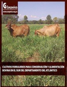 Cultivos forrajeros para conservacion y alimentacion bovina