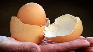 Huevos doble huevos