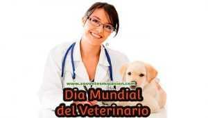 Día mundial del veterinario
