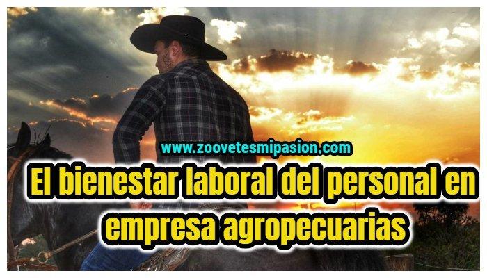 El bienestar laboral del personal en empresa agropecuarias