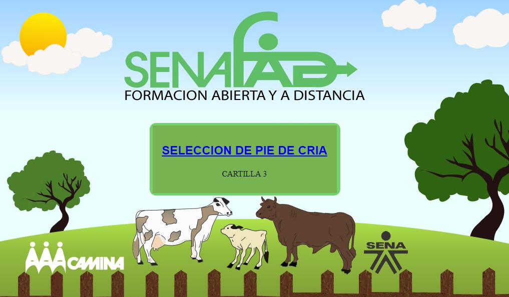 Capitulo 3. Selección de pie de cría de bovino