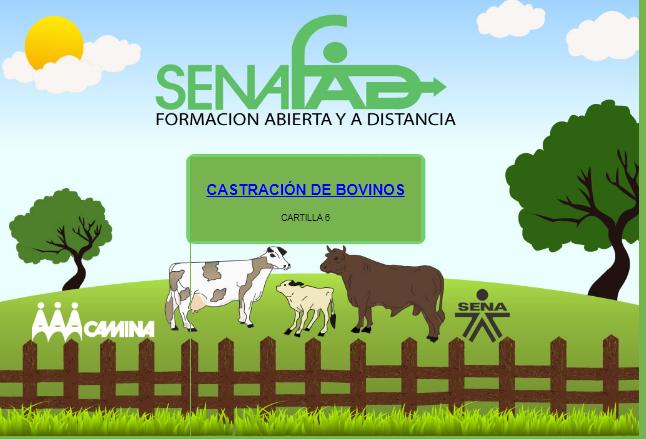 Modulo 6. Castración en bovinos