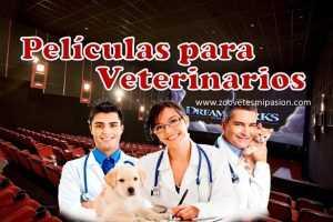 peliculas para veterinarios