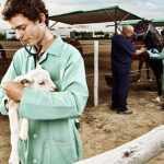 Universidades de veterinaria