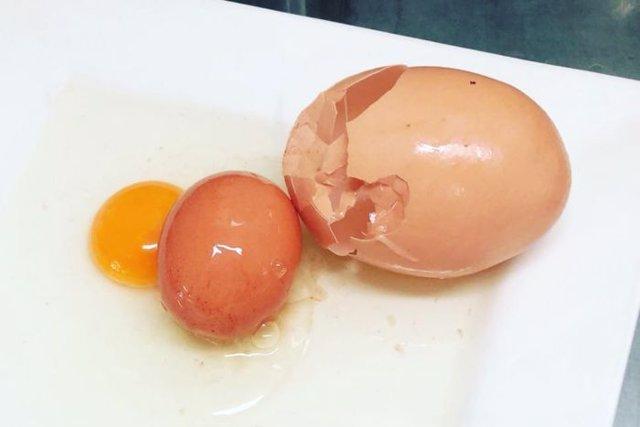 huevo doble huevo