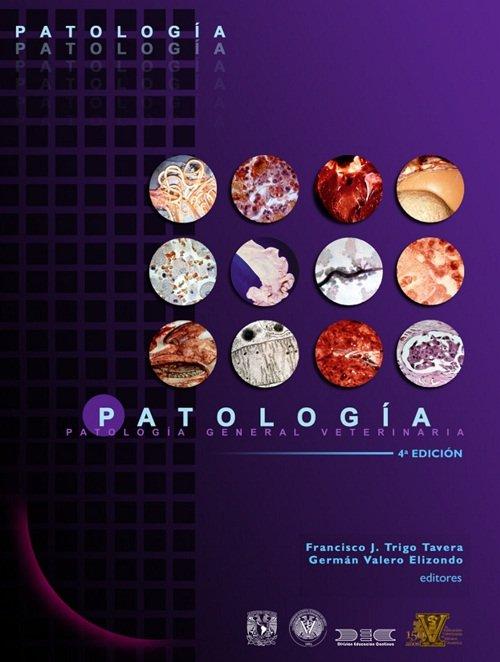 Ebook Chronic Obstructive Pulmonary