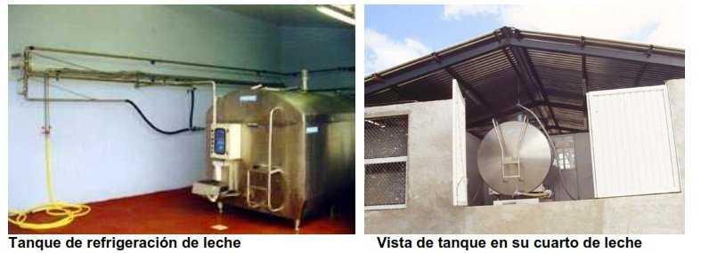 Tanque de refrigeración ordeño