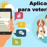 Las mejores aplicaciones para veterinarios