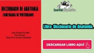 Libro: Diccionario de Anatomía.