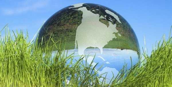 Los pastos ayudan al calentamiento global