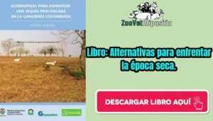 Libro: Alternativas para enfrentar la época seca.