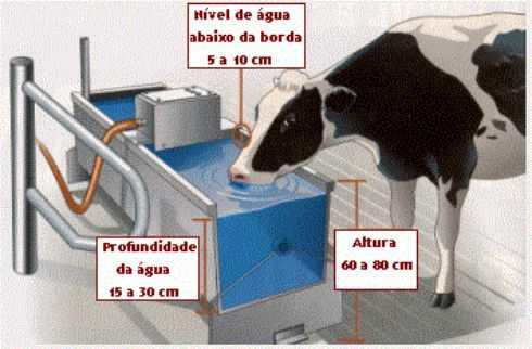 bebederos para el ganado