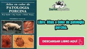 Libro: Atlas a Color de patología porcina.