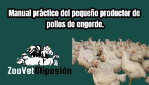 Manual práctico del pequeño productor de pollos de engorde.
