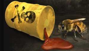 ¿Quién está matando las abejas?