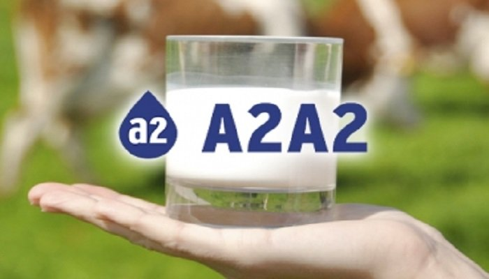 que es la leche A2