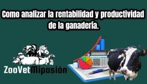 Como analizar la rentabilidad y productividad de la ganadería.