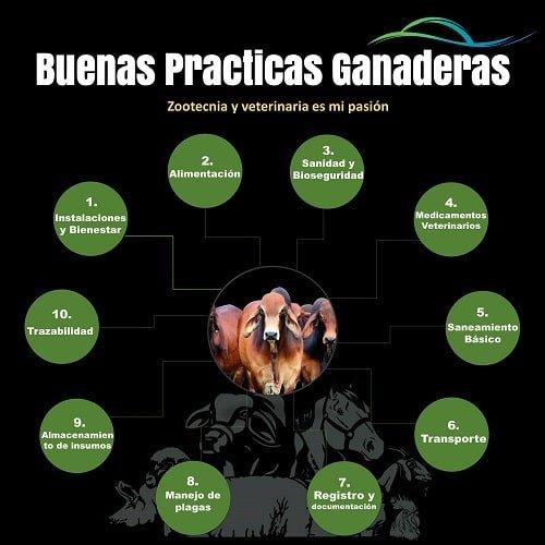 Elementos de las Buenas-Practicas-Ganaderas
