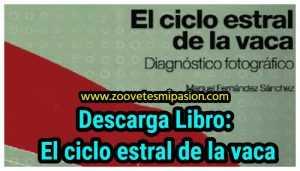Libro PDFf ciclo estral