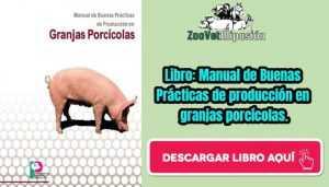 Libro: Manual de Buenas Prácticas de producción en granjas porcícolas.