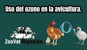 Uso del ozono en la avicultura.