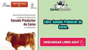 Libro: Ganado Productor de Carne