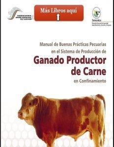 Ganado productor de carne