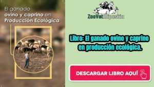 Libro: El ganado ovino y caprino en producción ecológica.