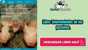 Libro: Enfermedades de los porcinos.