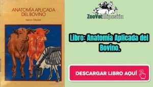 Libro: Anatomía Aplicada del Bovino.