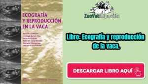 Libro: Ecografía y reproducción de la vaca.