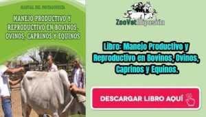 Libro: Manejo Productivo y Reproductivo en Bovinos, Ovinos, Caprinos y Equinos.