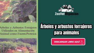 Árboles y arbustos forrajeros utilizados en alimentación animal como fuente proteica