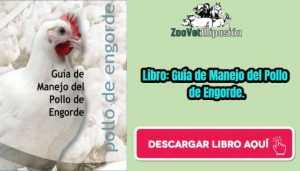 Libro: Guía de Manejo del Pollo de Engorde.