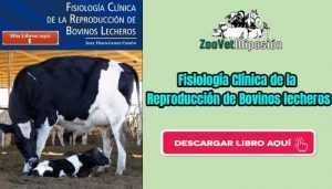 Libro Fisiología Clínica de la Reproducción de Bovinos lecheros