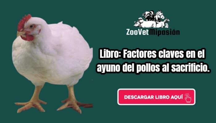 Libro: Factores claves en el ayuno del pollos al sacrificio.