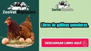 Libros de gallinas ponedoras
