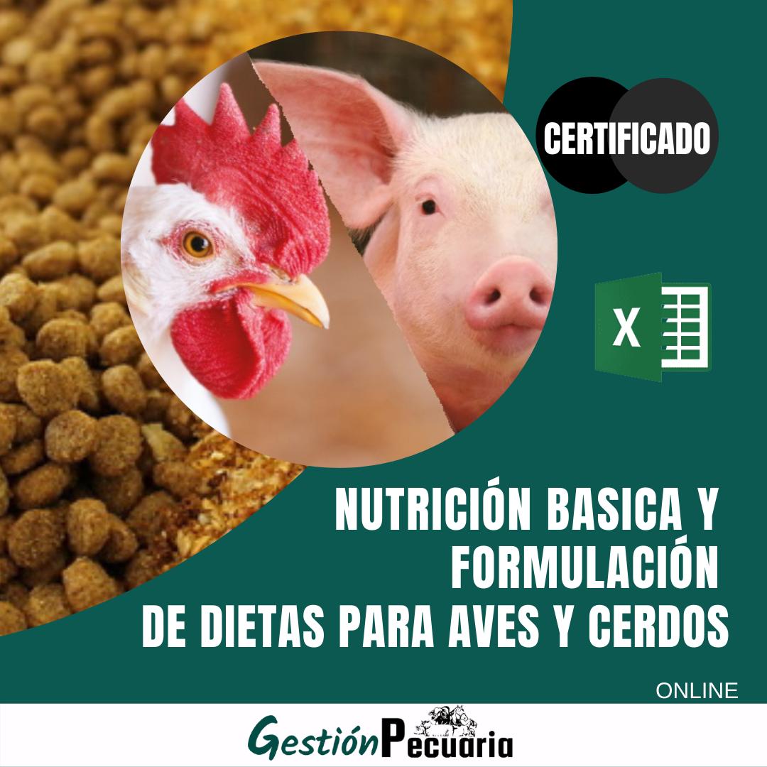 Curso Nutrición y formulación de dietas para aves y cerdos
